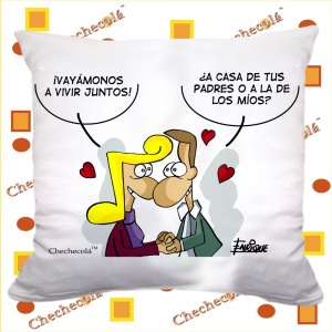 "Cojín Enrique San Valentín  ""Casa """