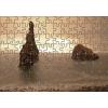 Puzzle Ribera Da Janela